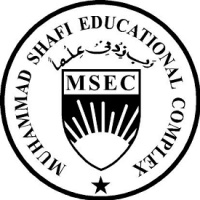 Academic Instructor job in Muhammad Shafi Educational Complex in