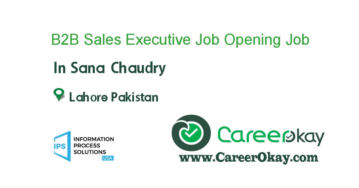 B2B Sales Executive Job Opening