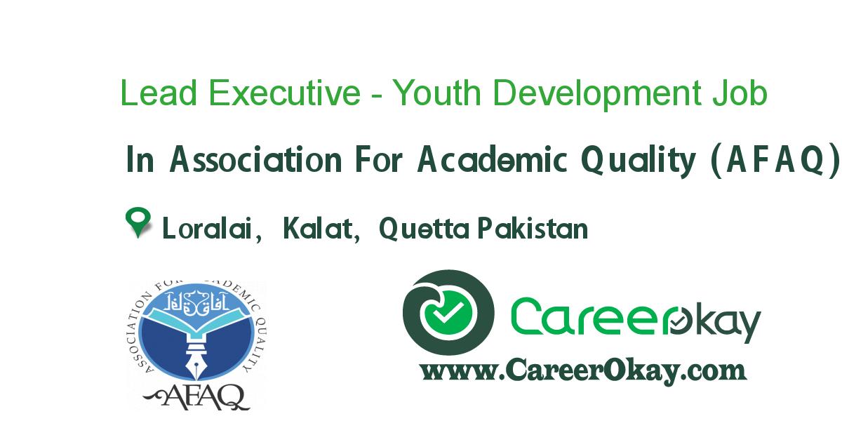 Lead Executive - Youth Development