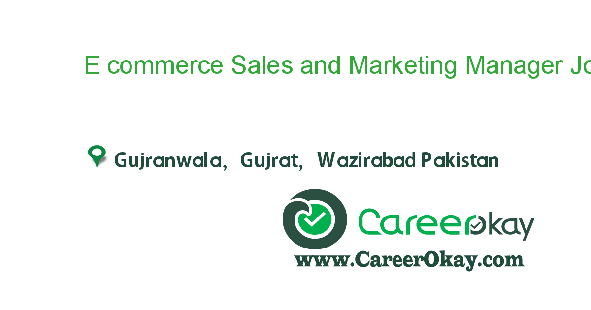 E commerce Sales and Marketing Manager