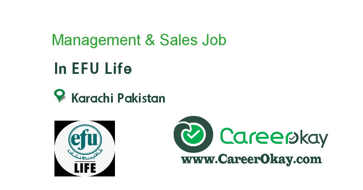 Management & Sales