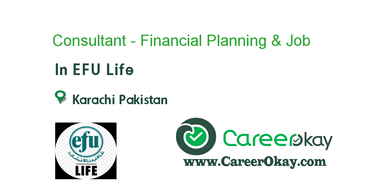 Consultant - Financial Planning & Analysis