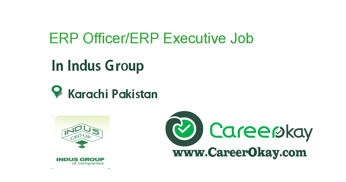 ERP Officer/ERP Executive