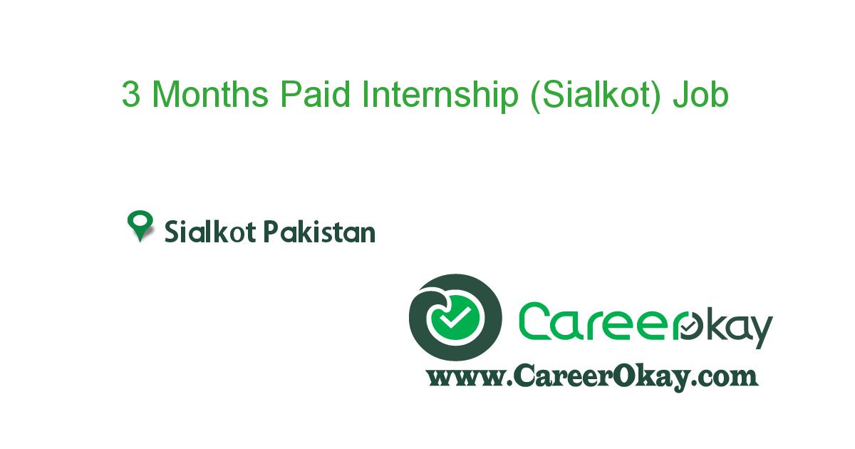 3 Months Paid Internship