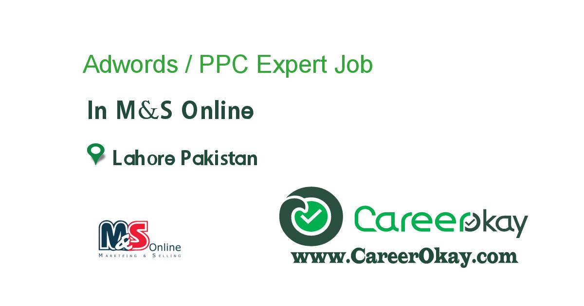 Adwords / PPC Expert