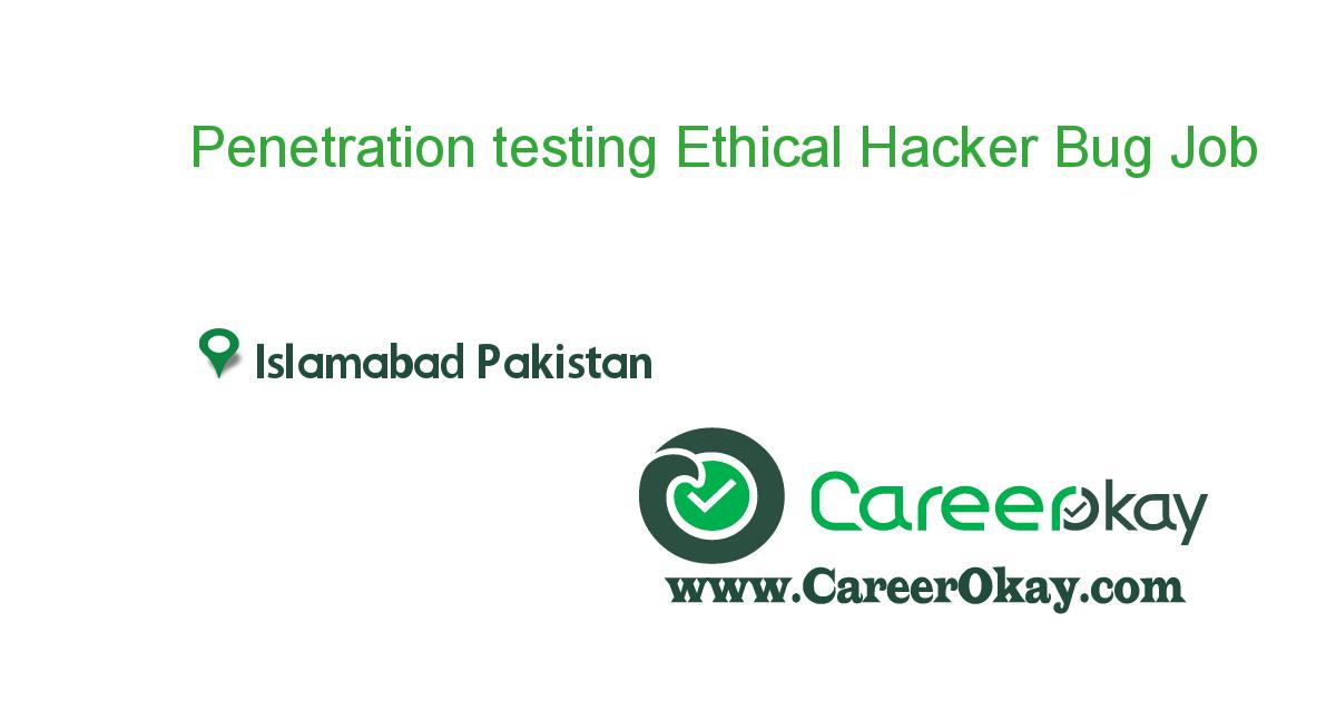 Penetration testing Ethical Hacker Bug bounty hunter
