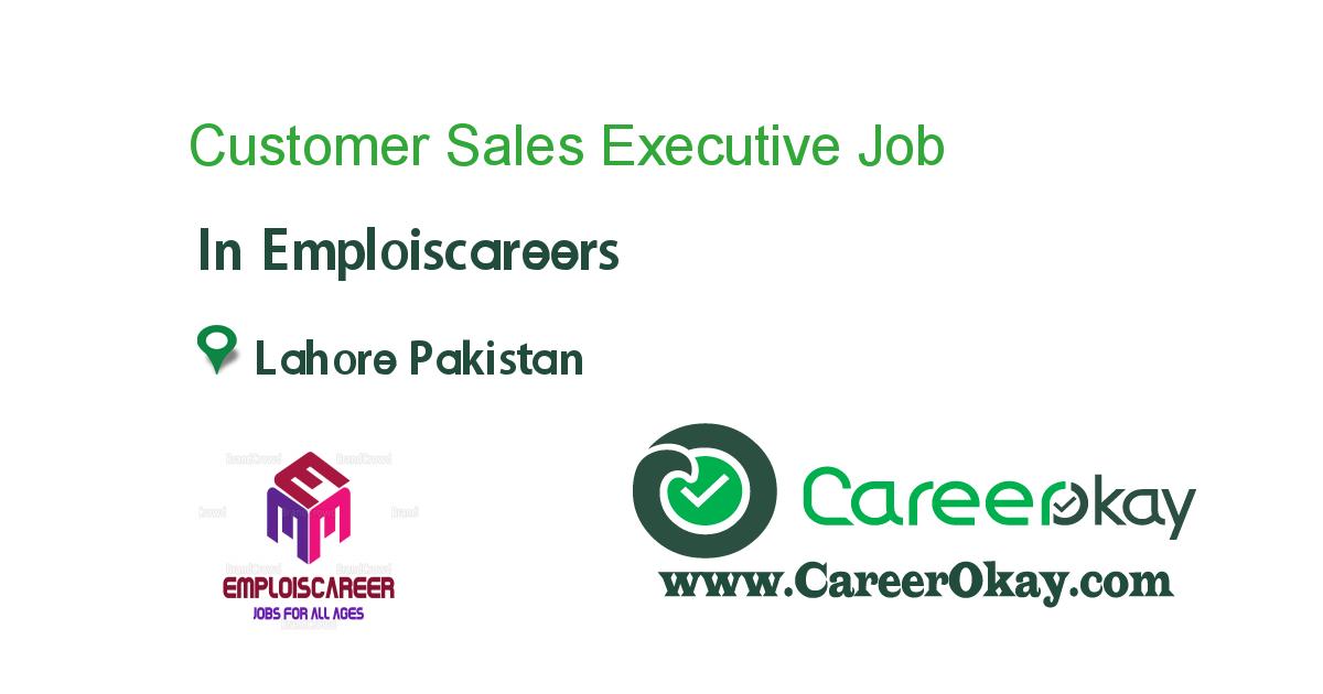 Customer Sales Executive