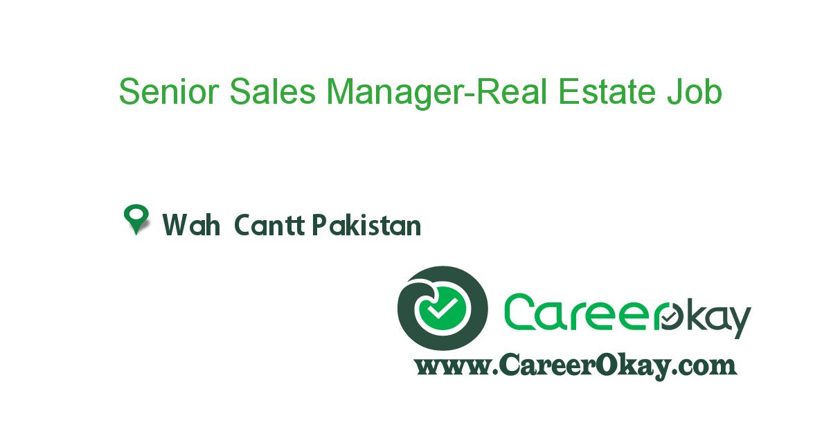Senior Sales Manager-Real Estate