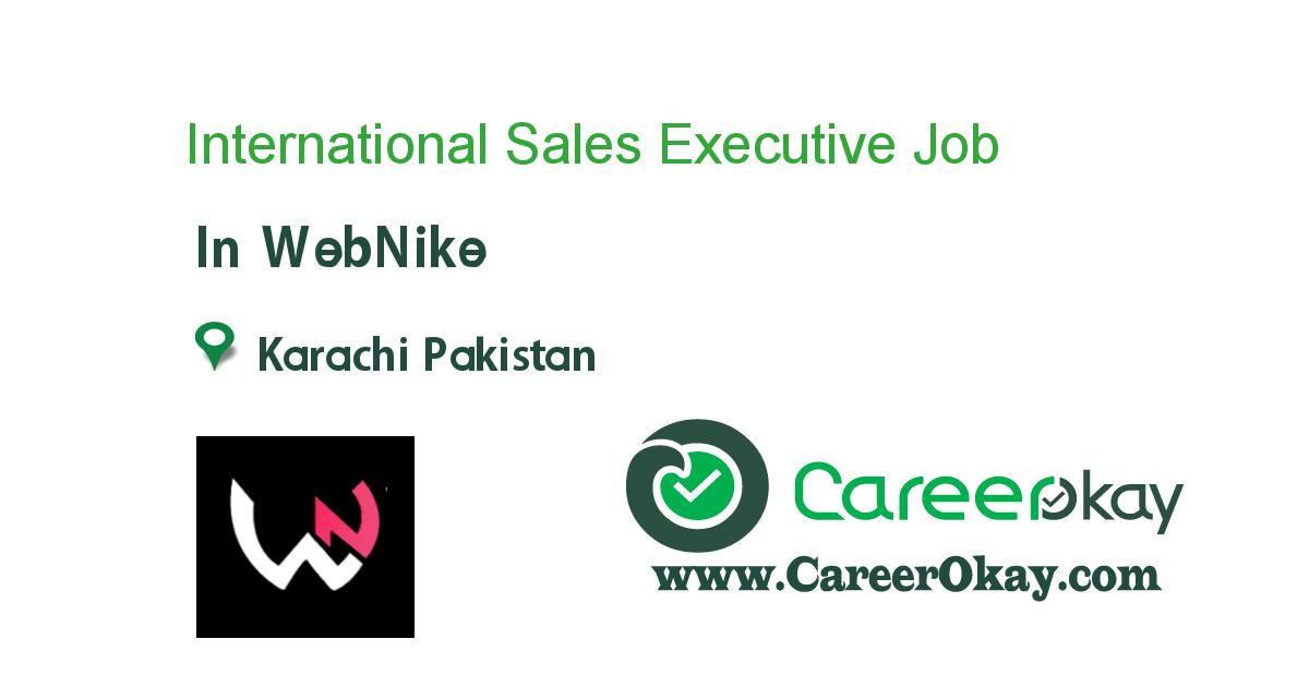 International Sales Executive