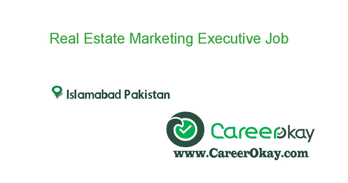 Real Estate Marketing Executive
