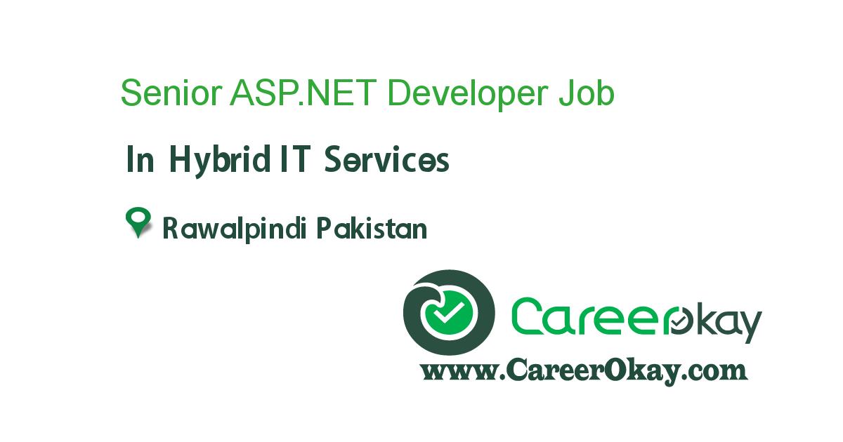 Senior ASP.NET Developer